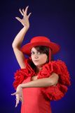 behagfull flamenco Arkivfoto