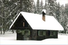 Behandeld met sneeuw Stock Fotografie