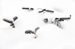 Behandeld in sneeuw Stock Foto's
