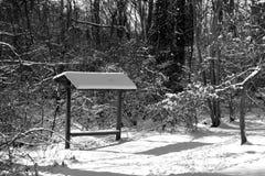 Behandelde bank in sneeuw Stock Afbeeldingen