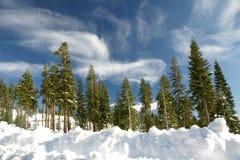 Behandelde de sneeuw zet Shasta, de Provincie van Siskiyou, Californië op Stock Foto's