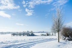 Behandelde sneeuw Royalty-vrije Stock Afbeeldingen