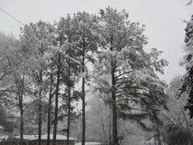 Behandelde sneeuw Royalty-vrije Stock Foto
