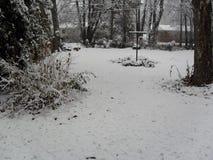 Behandelde sneeuw Stock Afbeeldingen