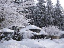 Behandelde sneeuw Stock Foto's