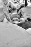 Behandelde sneeuw riverbank stock fotografie