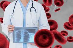 Behandeln Sie die Frau, die ein Röntgenbild mit Zellen 3D gegen grauen Hintergrund hält Stockbilder