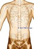 Behandla med akupunktur punkt som drar KI17 Shangqu, illustrationen 3D Royaltyfria Bilder