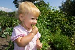 Behandla som ett barn äter ärtor Royaltyfri Bild