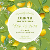 Behandla som ett barn ankomsten eller duscha kortet - med blom- design för citron Arkivfoton