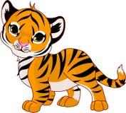behandla som ett barn att gå för tiger Arkivbild