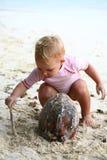 Behandla som ett barn att leka med kokosnöten Arkivbilder