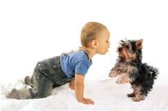 Behandla som ett barn att spela för pojke- och hundvalp Arkivfoton