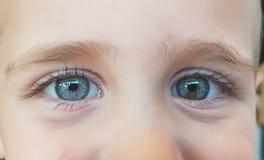 behandla som ett barn blåa ögon Royaltyfria Foton