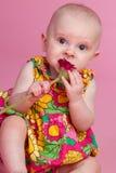 behandla som ett barn blomman arkivbild
