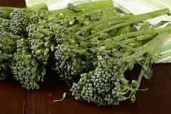 Behandla som ett barn broccoli Arkivfoton