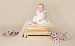Behandla som ett barn Cherry Blossom Arkivfoto