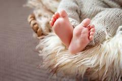 Behandla som ett barn den övre bilden för slutet av nyfött fot Royaltyfria Bilder