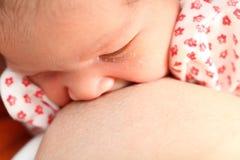 behandla som ett barn den breastfeeding modern Royaltyfri Fotografi