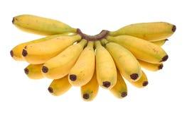 behandla som ett barn den guld- bananen Royaltyfria Bilder