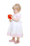 behandla som ett barn den gulliga blommagerberaen arkivfoton