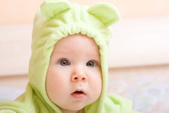 behandla som ett barn den gulliga fem månaden Fotografering för Bildbyråer