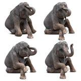 Behandla som ett barn den isolerade elefanten royaltyfria foton