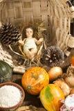 Behandla som ett barn den Jesus statyetten i landskök Royaltyfria Foton