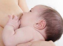 behandla som ett barn den nyfödda breastfeeding modern Royaltyfri Fotografi