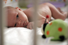 behandla som ett barn den nyfödda flickan Arkivfoto