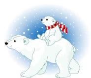 behandla som ett barn den polara björnmomen Arkivfoton