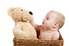 behandla som ett barn den stora backetbjörnen Arkivfoto