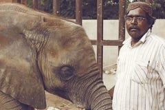 Behandla som ett barn elefanten på den Karachi zoo med vaktmästaren Arkivfoto