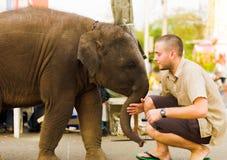 Behandla som ett barn elefanten som skjuter turist- i stadens centrum Bangkok Royaltyfri Fotografi