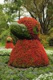 Behandla som ett barn fågeln: Mainau botaniska trädgårdar Arkivfoto