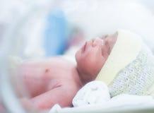 behandla som ett barn fött nytt Royaltyfria Bilder