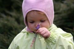 behandla som ett barn fjädern Fotografering för Bildbyråer