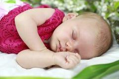Behandla som ett barn flickan i rosa färger inom av korg med vårblommor. Royaltyfria Foton