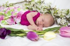 Behandla som ett barn flickan i rosa färger inom av korg med vårblommor. Arkivbild