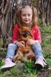 Behandla som ett barn flickan med ett pekinesesammanträde på gräset Arkivbild