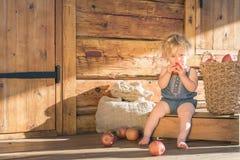 Behandla som ett barn flickan som äter äpplet på en lantgård Royaltyfria Bilder