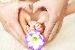 Behandla som ett barn fot i mom& x27; s och dad& x27; s-händer med en blomma och ett suddigt b Royaltyfri Fotografi