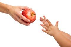 Behandla som ett barn händer som ut ner till äpplet. Arkivbild