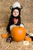 behandla som ett barn halloween pumpa Royaltyfria Bilder