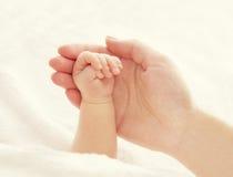 Behandla som ett barn hand- och moderhänder, kvinnan som rymmer den nyfödda nyfödda ungen Royaltyfria Bilder