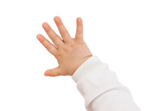 Behandla som ett barn handen royaltyfri foto
