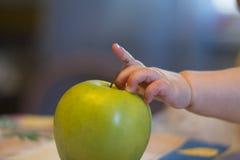 Behandla som ett barn handen på gröna Apple Royaltyfria Bilder