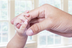 Behandla som ett barn handen som fattar faderfingret Arkivbild