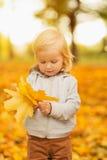 Behandla som ett barn holdingen fallna leaves royaltyfri foto