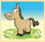 behandla som ett barn hästen Arkivbilder